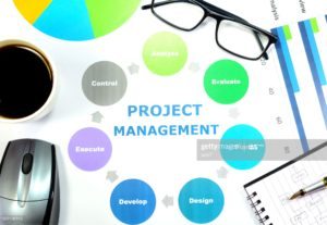 I will be your project manager and business analyst